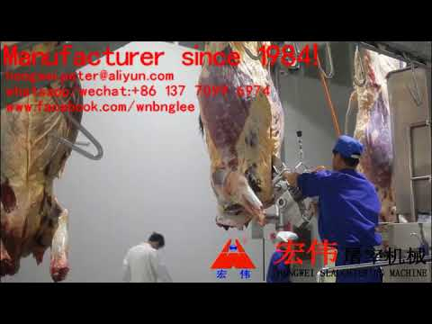 cattle slaughter line cow slaughterhouse equipment équipement complet d † abattoir de bovin