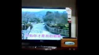 李翊君-勇敢的愛 (cover by 鈺旋)