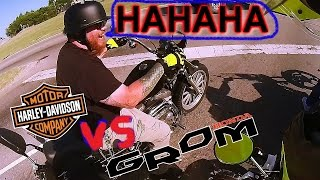 Harley Rider Laughs at GROM MSX125