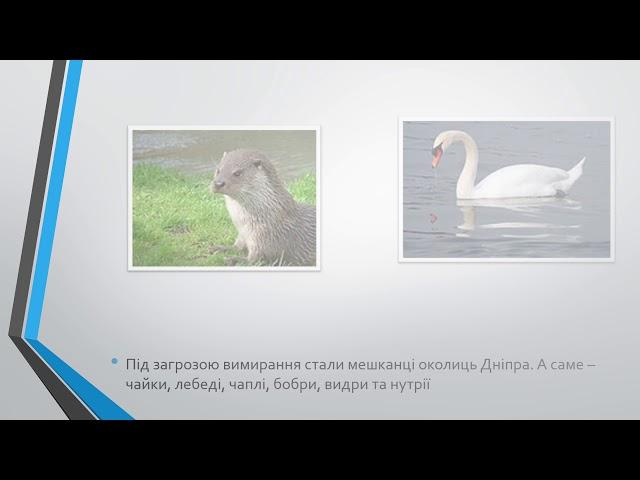 10 15   Каднічанський Олег Дмитрович