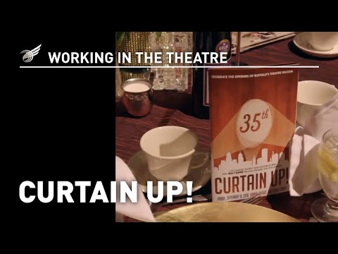 Working in the Theatre: Curtain Up!