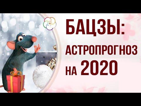 БАЦЗЫ 2020 год: АСТРОПРОГНОЗ НА ГОД МЕТАЛЛИЧЕСКОЙ КРЫСЫ 2020