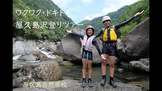 【屋久島沢登りガイドツアー】ワクワク・ドキドキ心が躍りだす楽しいツアー