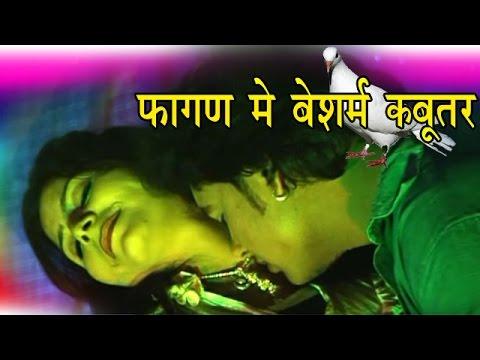 Rajasthani Song 2017 - Fagan Me Besharam Kabootar...