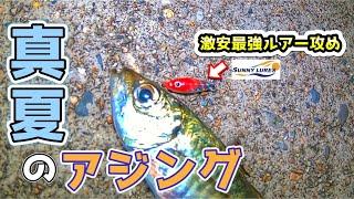 【アジング】夏に狙うアジ!!コスパ最強サニールアーズ攻め☆ ソアレBB ソアレTT