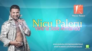 Nicu Paleru - Vino la Jose Armando (Parodie) Muzica de Petrecere