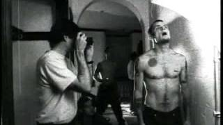 red hot chili peppers - meet the band