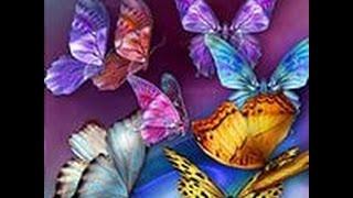 Самые красивые бабочки в мире!!! КРАСОТА!!!!!!!!!!!!!!