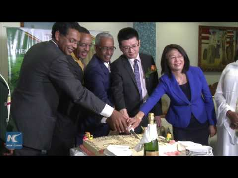 First direct flight launched between Addis Ababa and China's Chengdu