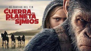 La guerra del planeta de los simios pelicula completa en castellano
