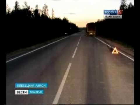 В Плесецком районе в ДТП погибла 20-летняя девушка