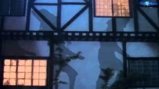 Fleetwood Mac - Everywhere (Chris' Psychemagik Revisited Mix) Video