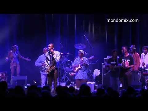 Seun Kuti & Egypt 80 Live Videos