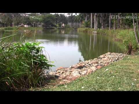 Lago de la Babilla-HD Youtube El Pais
