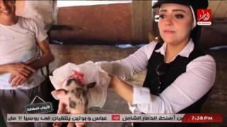 الابواب المغلقة | مغامرة ناريمان زين العابدين مع احد تجار لحم الخنازير من داخل منشية ناصر