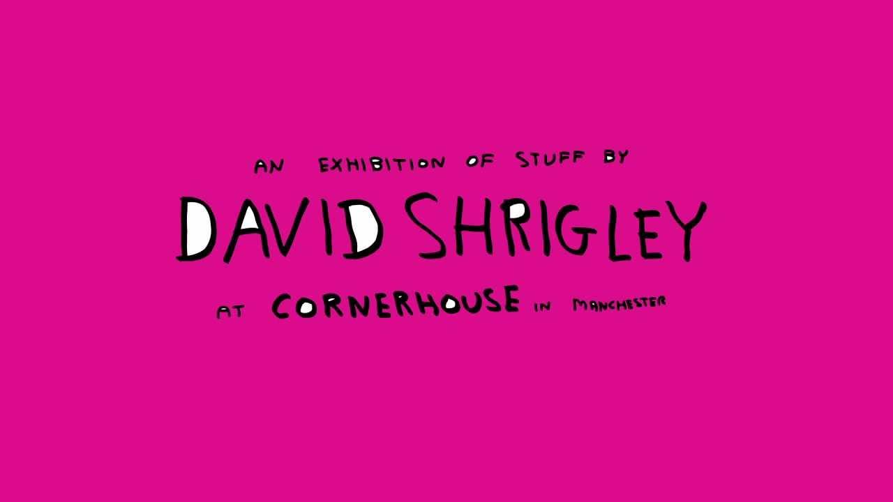 how are you feeling shrigley david