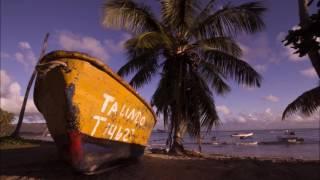 Shakira - Coconut Tree (Lyrics)