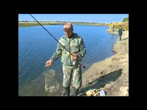 днепров рыбак минус