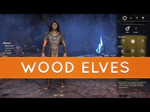 The Elder Scrolls Online: Races - Bosmer | Wood Elves