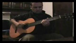 Hugo Barros - O pato - The Duck - Le canard -