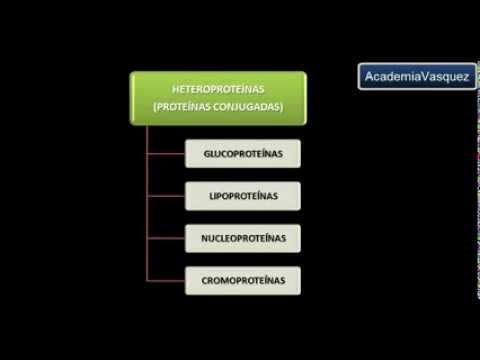 Heteroproteínas o Proteínas