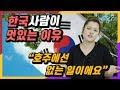호주인이 말하는 한국 사람이 멋있는 이유