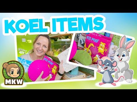 🧊🐰 Koel Items voor knaagdieren | Welke zijn er en wat kun je ermee + tips!