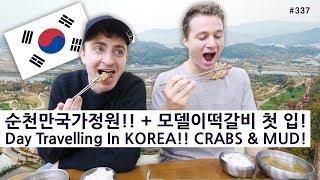 순천만국가정원!! + 미국 모델의 떡갈비 첫 입! (337/365) Day Travelling In KOREA! CRABS & MUD!