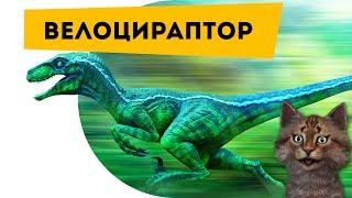 Велоцираптор | Самое интересное про динозавров | Наука для детей Динозавры