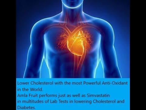 Poliklinika Harni - Simvastatin učinkovit kod PCOS