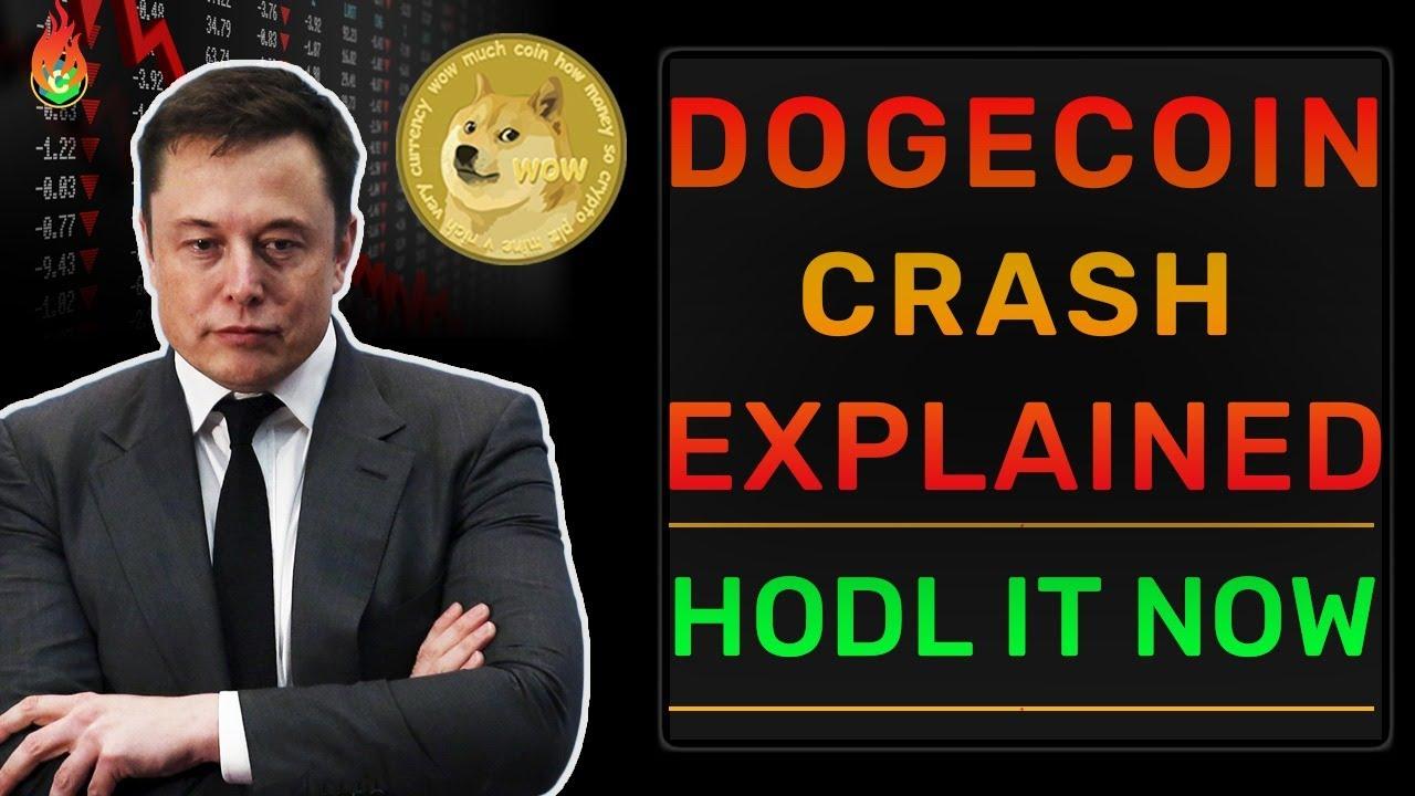 #Dogecoin Trending Amid Crypto Crash As Fans Share 'Hodl' Memes