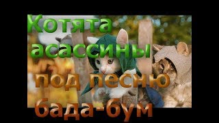 Котята ассасины под песню Бада-бум