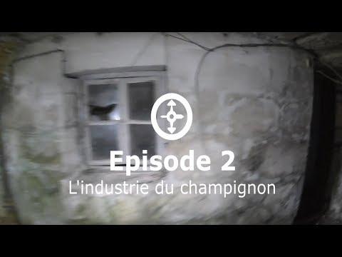 Rencontre Coquine à Narbonne-Plage (11)