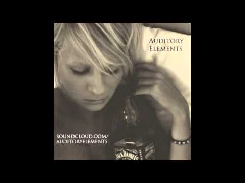 Doors  Alabama Song AuditoryElements Remix