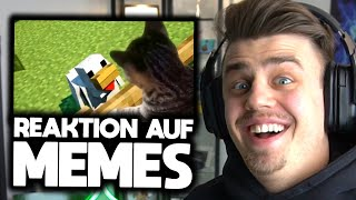 Reaktion auf UNUSUAL MEMES 😂👌🏼 | Papaplatte Highlights