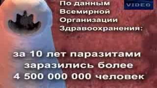 Фильм 'Паразиты'Лидомед Био™10 прог Лидер групп Инт