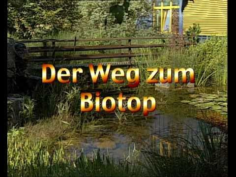 Biotop Anlegen Anleitung | rheumri.com