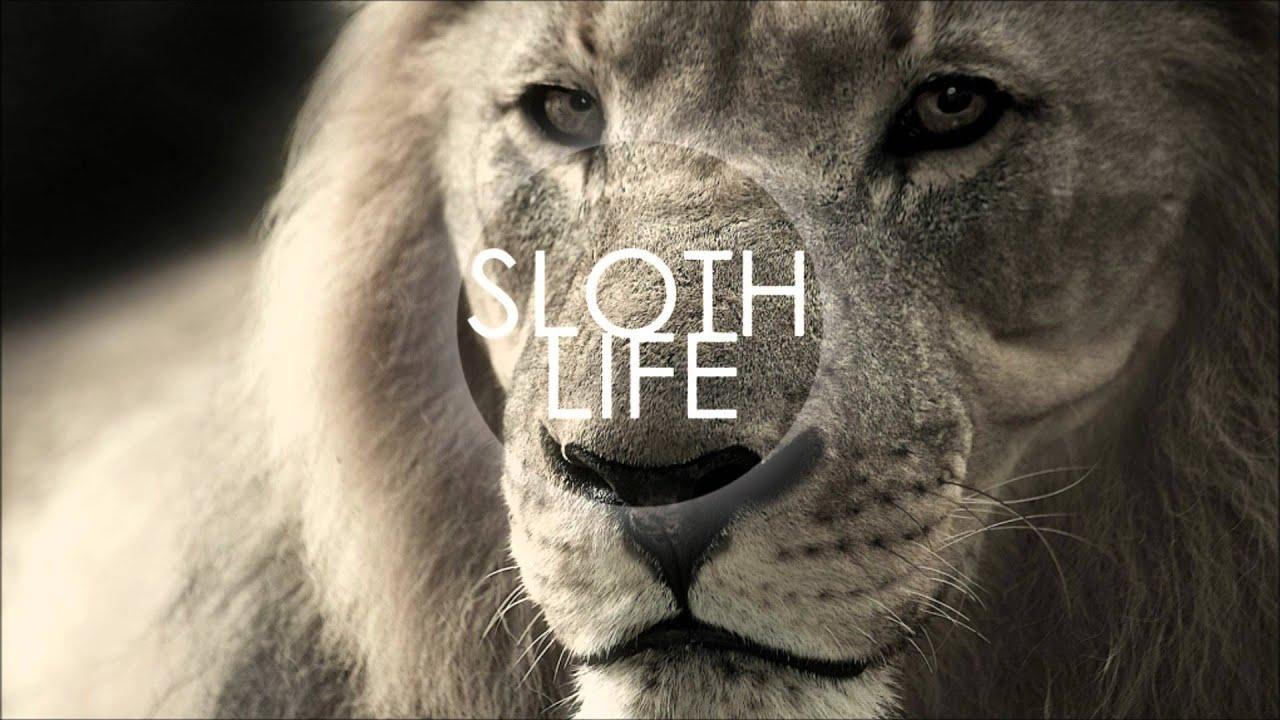 honne-top-to-toe-sloth-life