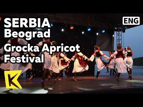 【K】Serbia Travel-Beograd[세르비아 여행-베오그라드]그로츠카 살구축제의 공연/Grocka Apricot Festival/Dance/Performance/Kolo