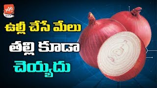 Onions Children's | Dedicated To Delivering News Related To Health | YOYO TV Health
