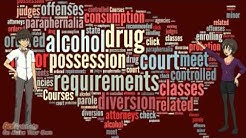 Online Drug Diversion Deferred Entry of Judgment Class for Court Ordered Requirements