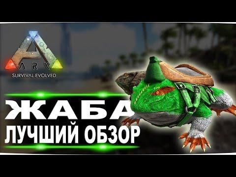 Жаба (Beelzebufo) в АРК. Лучший обзор: приручение, разведение и способности лягушки в Ark.