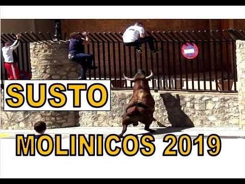 SUSTO TORO Encierro Molinicos 2019 San José