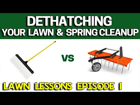 How to Dethatch your Lawn - Raking vs Power Dethatcher - Easy with Tips! Lawn Lessons #1 - 동영상