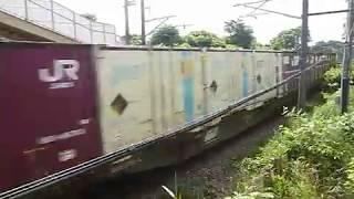 [警笛あり]JR貨物 EH500形58号機牽引 3081レ貨物列車 松島駅付近通過
