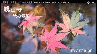 """沼田市 観音寺 秋 〜秋の気配   """"autumn is in the air""""   観音寺は笑顔があふれるお寺です! イメージ動画 music by m♪she on"""