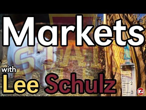 Market with Dr. Lee Schulz | June 7, 2019