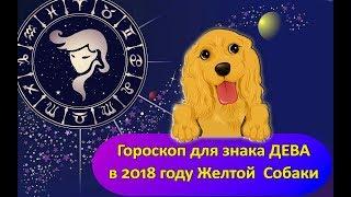 Гороскоп знака Зодиака ДЕВА на 2018 год Желтой Собаки