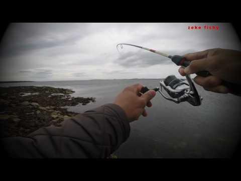Coastal Sea Trout Fishing