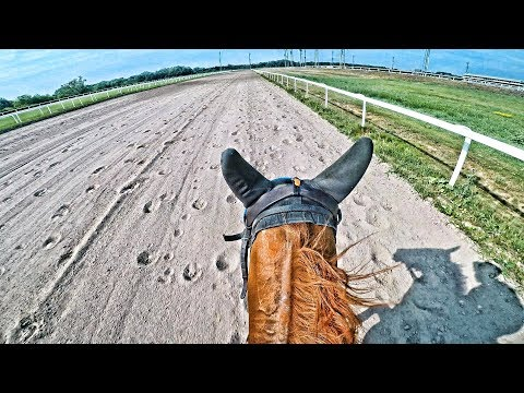 First Time Rider Goes 68 Km/h On A Race Horse